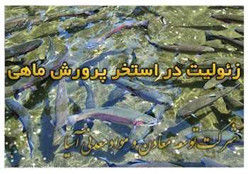 زئولیت بستر کشت ماهی