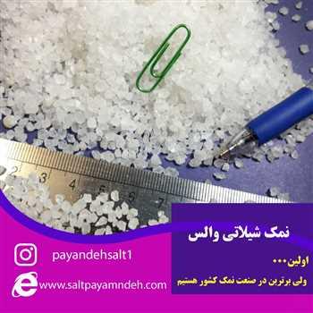 استفاده جالب از نمک سایز نخود در چرم سازی