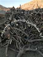 خرید و فروش چوب: چوب پالتی، ضایعاتی، ذغالی، تخته